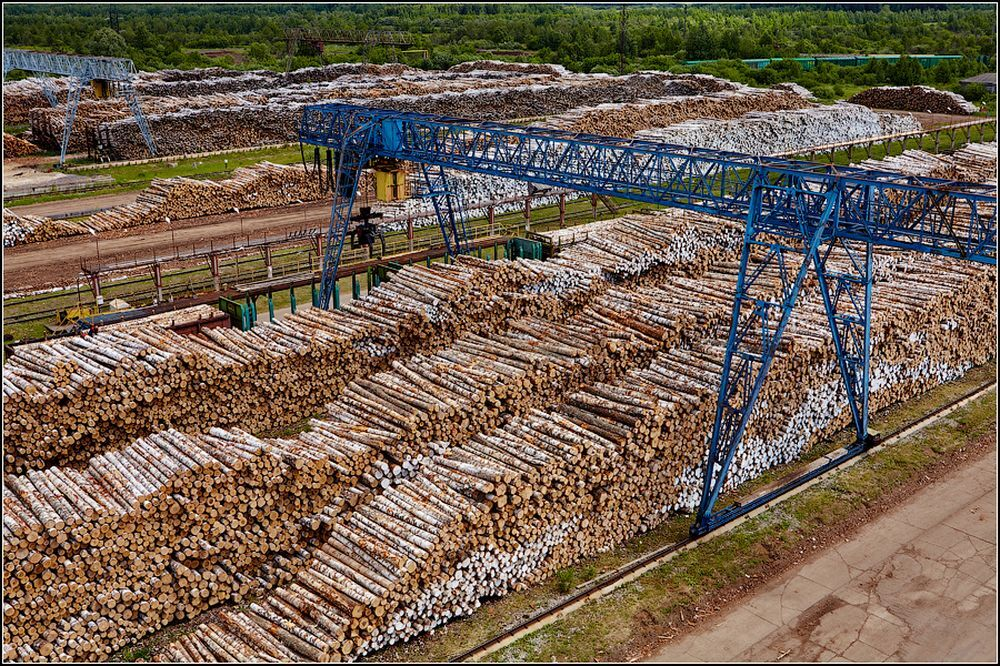 To balance log supply from the forest to the factory there is a buffer stock of logs for a couple of days or weeks of consumption.
