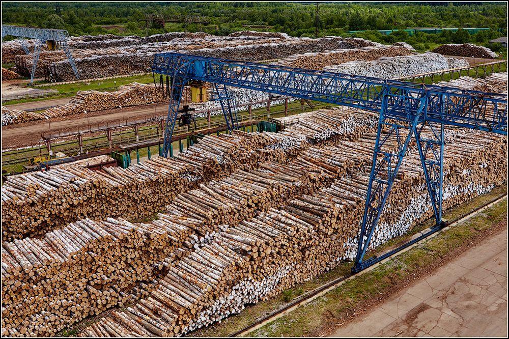 Для сбалансированной поставки древесины из леса на завод формируется буферный запас бревен, рассчитанный на пару дней или недель работы.